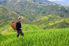 Le vieil agriculteur travaille et porte des paniers Images libres de droits