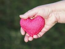 Le vieil homme se tient dans la paume de votre coeur rose tricoté à la main se prolongent Image stock