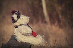 Le vieil ours de jouet se reposent dans le banc Images libres de droits