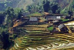 le Vietnam Images libres de droits