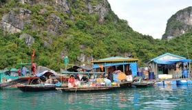 Le Vietnam, baie de Halong Photo libre de droits