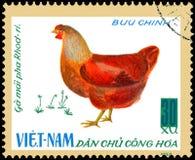 LE VIETNAM - VERS 1968 : le timbre-poste imprimé au Vietnam montre la poule, une série de volaille domestique Photo stock