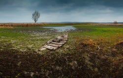 Le vieux bateau et nature Photo libre de droits