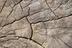 Le vieux bois donne au fond une consistance rugueuse Image stock