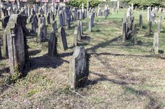 Le vieux cimetière juif dans la ville de Horice est très grand et bien conservé Photo libre de droits
