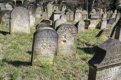 Le vieux cimetière juif dans la ville de Horice est très grand et bien conservé Images libres de droits