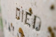 Le vieux ` de pierre tombale EST MORT ` avec de la mousse images stock