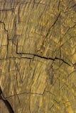 Le vieux et criqué bois a peint jaune image libre de droits