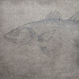 Le vieux fond de papier texturisé avec des contours de poissons d'aquarelle photographie stock libre de droits