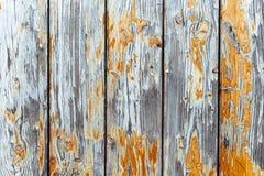 Le vieux fond en bois peint gris et jaune blanc sale et superficiel par les agents de texture de planche de mur a survécu par des photo libre de droits