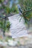 Le vieux message sur une branche dans la forêt Photos stock