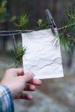 Le vieux message sur une branche dans la forêt Photographie stock libre de droits