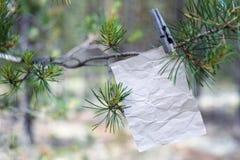 Le vieux message sur une branche dans la forêt Photographie stock