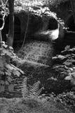 Le vieux moulin photographie stock libre de droits