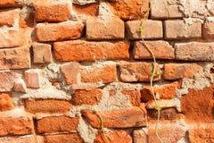 Le vieux mur de briques de émiettage Briques et pierres dans le vieux mur Photos stock