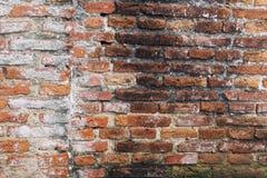 Le vieux mur de la colle Photographie stock libre de droits