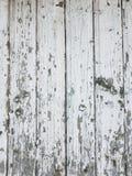 Le vieux mur en bois minable a peint le fond vert pâle de texture photos libres de droits