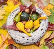 Le vieux panier de paille rempli de potirons de bébé l'automne a coloré des feuilles Photos stock