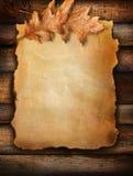 Le vieux papier de défilement avec le chêne part sur le bois Image stock