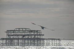 Le vieux pilier à Brighton au crépuscule images stock