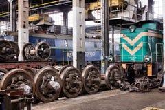 Vieux trains de polonais dans le hall de service photo libre de droits