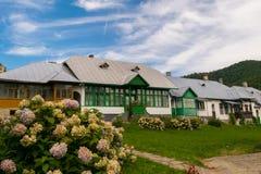Le vieux Roumain typique loge la façade avec les portes et les fenêtres en bois peintes, l'herbe verte et les fleurs photo stock