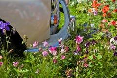 Le vieux véhicule a stationné dans un domaine des fleurs Image libre de droits