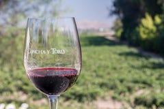 Le vignoble Santiago de Conha y Toro font le Chili Photo stock