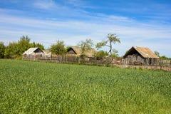 Le village à côté du champ de blé photo libre de droits