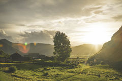 Le village avec des vaches au coucher du soleil image libre de droits