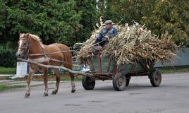 Le village du ` s de Firman court un buisson à quatre roues avec le cornfl riche en maïs Images libres de droits