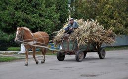 Le village du ` s de Firman court un buisson à quatre roues avec le cornfl riche en maïs Image stock