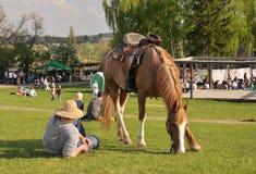 Le villageois se repose, cheval frôle photographie stock libre de droits