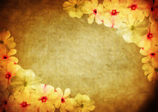 Le vintage a dénommé le cadre floral Photographie stock libre de droits