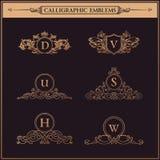 Le vintage s'épanouit des éléments Ornements calligraphiques réglés illustration de vecteur