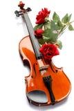 Le violon et s'est levé Photos stock