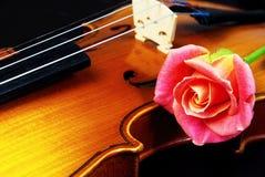Le violon et s'est levé closeup Images stock