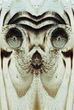Le visage étranger ou animal dans le conseil en bois Images libres de droits