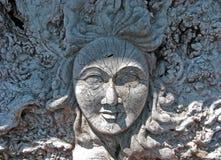 Le visage d'une femme découpé dans une boule de racine en bois affligée Images libres de droits