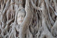 Le visage de Bouddha Photos libres de droits