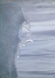 Le visage de l'hiver Image libre de droits