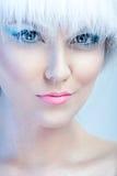 Le visage de la belle fille, avec le maquillage d'hiver image stock