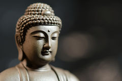 Le visage du zen de style du Bouddha sur le fond naturel illustration stock
