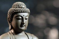 Le visage du zen de style du Bouddha sur le fond naturel Photographie stock libre de droits