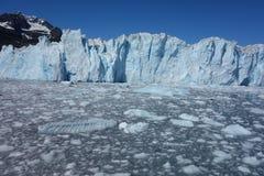 Le visage incroyable d'un glacier de vêlage Photographie stock