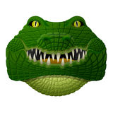 Le visage réaliste de crocodile pense à l'avenir Image libre de droits