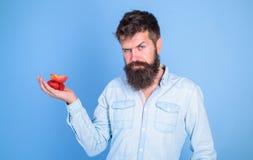 Le visage strict d'homme avec la barbe offre les festins organiques Fraises et pomme barbues de prises de hippie sur la paume Je  images stock