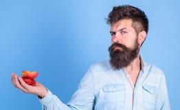 Le visage strict d'homme avec la barbe offre les festins organiques Je prends des festins pour vous Fraises et pomme barbues de p photographie stock