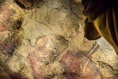 Le visiteur contemple la caverne de reproduction d'Altamira chez Arche national image libre de droits