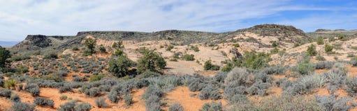 Le viste dell'arenaria e della lava oscillano le montagne e le piante del deserto intorno all'area nazionale di conservazione del immagini stock libere da diritti